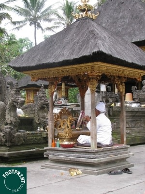 Indonesië reizen - Priester in Tempel - Purificatie Ceremonie - Ubud - Bali