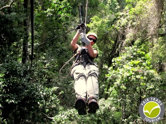 Canopy Tour in Tsitsikamma Nationaal Park