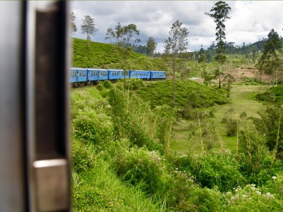 Wandel over de Horton Plains naar World's End en trein naar Ella