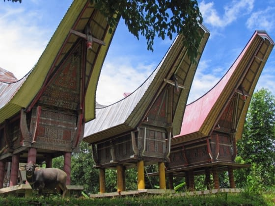 Traditionele dorpjes in Tana Toraja