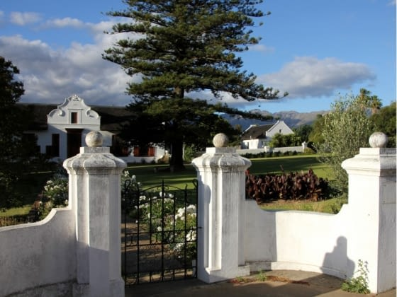 Cape Dutch stadje Tulbagh of walvissen spotten in Hermanus